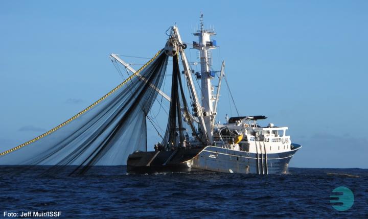 navio-pesqueiro.jpg